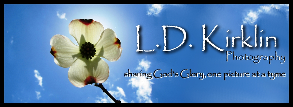 L.D. Kirklin Photography logo