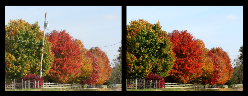 Fall Scene with Wire Fix